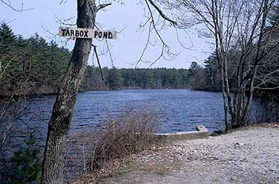 View down Tarbox Pond