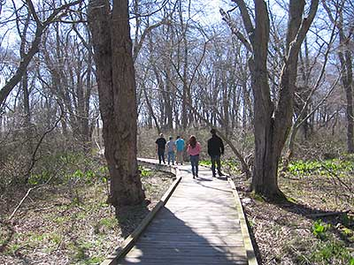 Walkers on the Greenway in the Northern, Wooded Section