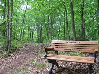 Bench in Memory of Donald P. Gagnon